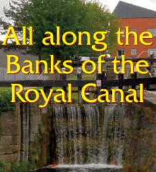 All along the banks of the Royal Canal